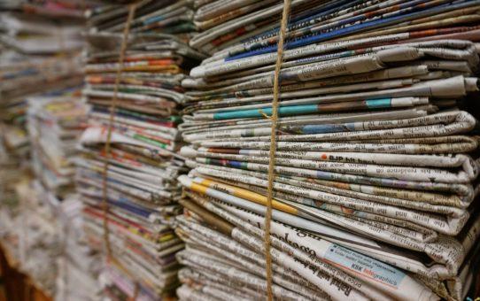 Artikel in Tageszeitungen